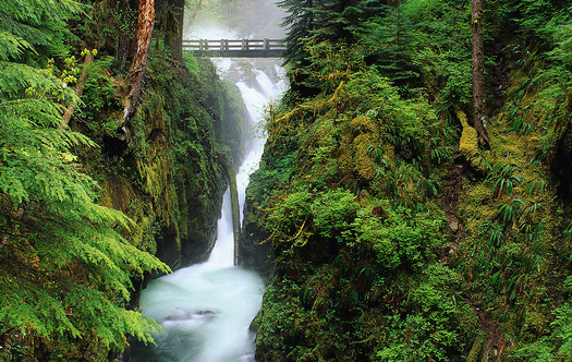 PHOTO: Hoh River Cascading through the rainforest at Olympic National Park, Washington. � Corbis.  All Rights Reserved.