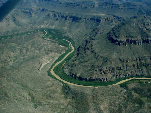 Photo (courtesy US Dept of Agriculture): aerial view of arundo near Big Bend National Park.
