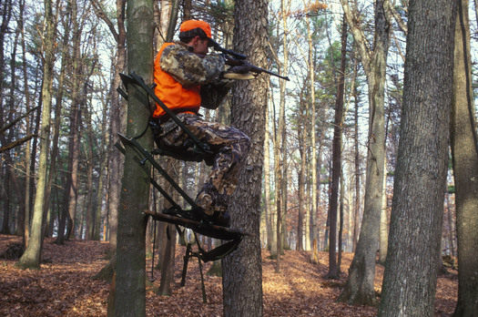 PHOTO: Man in a deer stand. Photo credit: Steve Maslowski, U.S. Fish & Wildlife Service.