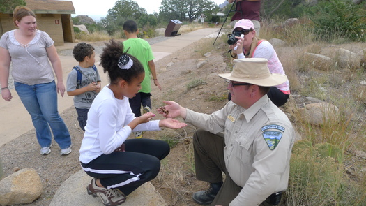 PHOTO: Krista Stoot looks at a tarantula held by a park ranger while Julia Armstrong focuses camera at Aguirre Springs Campground. Photo credit: Eliza Kretzmann.