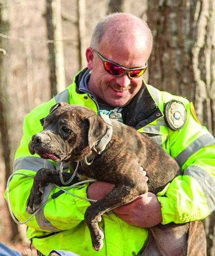 Cheatham County Animal Control Director TJ Jordi rescues one of the dogs.  Credit Amiee Stubbs/Animal Rescue Corps