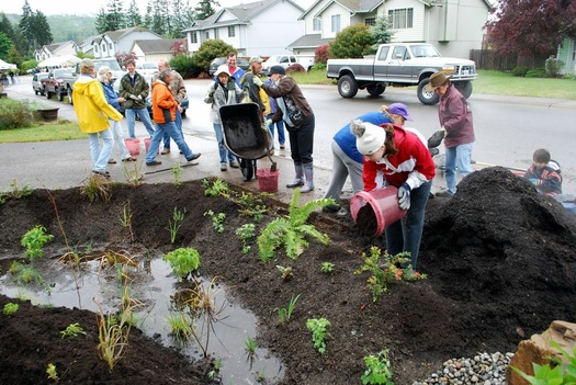"PHOTO: Eatonville wants to be known as Washington's ""capital"" of pollution-fighting rain gardens for installing more than any town in the state. Courtesy of Stewardship Partners."