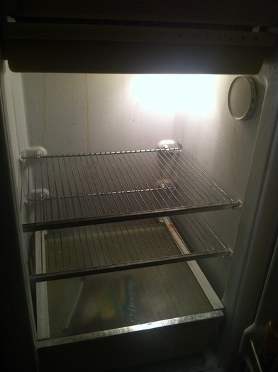 Empty refrigerators plague Massachusetts as a new report shows 15 percent � or nearly 1 out of 6 Bay Staters � report not having had enough money to buy food that they or their family needed at some point in 2012. Photo courtesy Mark Scheerer