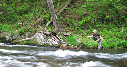 PHOTO: More and more these days, women are getting involved in outdoor recreation. Charity Rutter with R & R Fly Fishing will lead a clinic this month in conjunction with Tennessee Wild. Photo credit: Charity Rutter