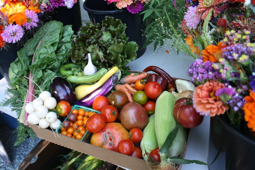 PHOTO: Vegetable and flowers grown on Soil Sisters Farm in Nevada City, CA. The farm benefits from sustainable agriculture programs that Congress left out of the short-term extension of the farm bill.