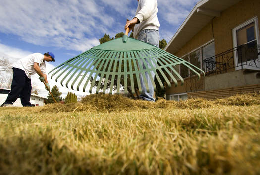 PHOTO: In the coming weeks, Iowans will be busy removing yard debris and cleaning out their garages and basements.