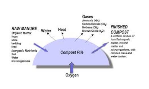 Graphic: Composting solid manureCourtesy: www.agriculture.gov.sk.ca