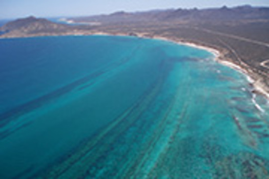 PHOTO: Cabo Pulmo at the southern tip of Baja California is where developers are planning a massive a massive hotel and golf complex next door to Cabo Pulmo reef.