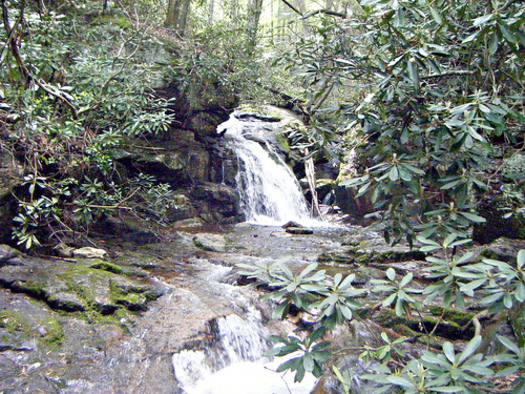 PHOTO: The Tennessee Wilderness Act would protect 20,000 acres in the Cherokee National Forest and create the state's first new wilderness area since 1986. CREDIT: Aaron Headley