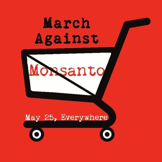Photo: In more than 400 cities around the world, people participated in this weekend's March Against Monsanto, voicing their disapproval of genetically modified crops and foods.