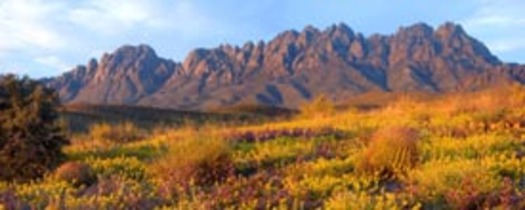 PHOTO: Hispanic organizations in New Mexico are expressing support for an Organ Mountains Desert Peaks national monument.Courtesy of:  Mike Groves.