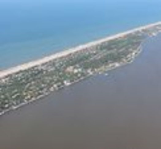 PHOTO: The brown tide overtakes Fire Island at Great South Bay on July 7. Photo credit: Christopher Gobler.