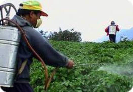 PHOTO: New York farm workers are in Washington DC today, calling on the state�s congressional delegation for stronger protections from hazardous pesticides they say are harming them and their families. Courtesy Pesticide Action Network.