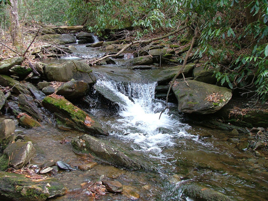 PHOTO: The Tennessee Wilderness Act has been reintroduced in Congress by the state�s two U-S Senators. The legislation seeks to permanently protect 20,000 acres of the Cherokee National Forest and add the state�s first new wilderness area in more than a quarter-century. CREDIT: Chris M. Morris