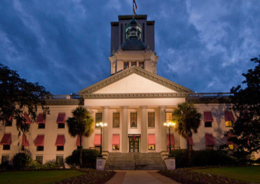 """We're going to hold down the Capitol in Tallahassee until the special session is called, to say enough is enough, and the black lives matter, and that all lives matter,"" said Elandria Williams of the Highlander Research and Education Center education team."