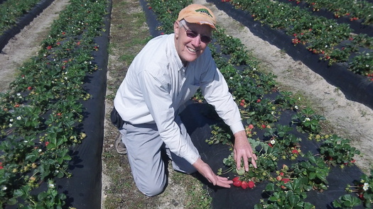 Photo: Vollmer on his farm in Bunn. Courtesy: Vollmer Farms