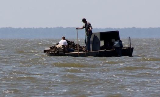 Photo: Oystermen on Apalachicola Bay. Courtesy: Doug Wakeman, Apalachicola Riverkeeper