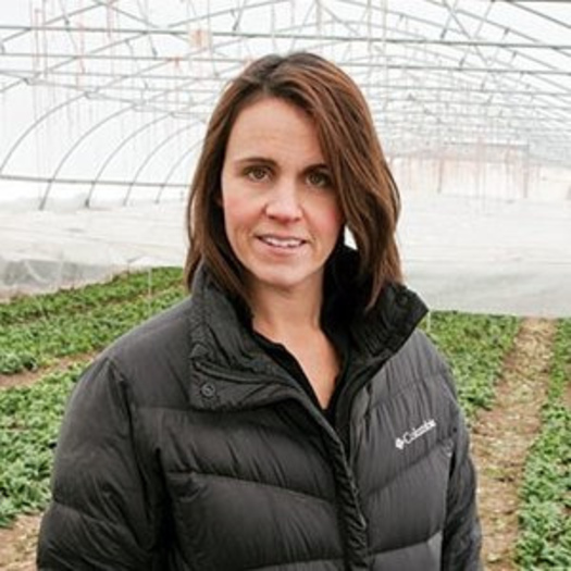Dr. Erin Silva, an organic production scientist at UW-Madison, will talk about cover-cropping at a research field day sponsored by Michael Fields Agricultural Institute.