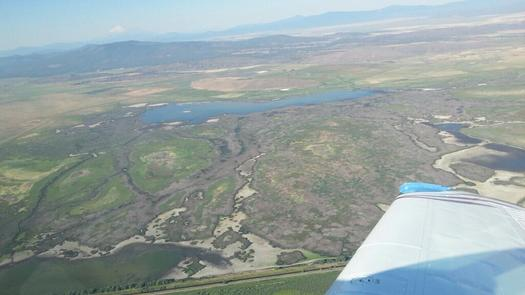PHOTO: Less than 200 acres of wetlands remain in the Lower Klamath Lake area of the refuge complex in this aerial photo taken Aug. 8. The refuge is now being reported as dry, which is why waterfowl are crowding into the water left in Tule Lake. Photo credit: U.S. Fish & Wildlife Service.