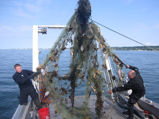 "PHOTO: Divers Crayton Fenn and Eric Hazelton with their most recent ""catch"" off Point Roberts reef in Whatcom County � an abandoned fishing net full of sea creatures that got caught in it over the years. Photo credit: Paul Rudell."