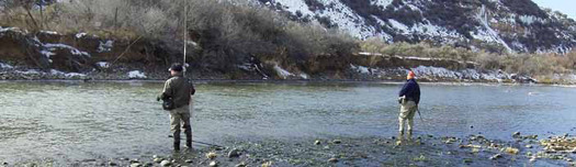 PHOTO: A new report claims that warmer waters, earlier snowmelt and wildfires are challenges that fish can�t really out-swim, espeically cutthroat trout - Wyoming's state fish. Credit: USFWS/flickr