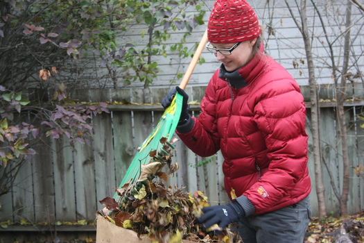 PHOTO: With the chill of fall blanketing Minnesota and winter not far behind, volunteer efforts are under way to help Minnesota's senior citizens with the yard work which many simply can no longer handle themselves. CREDIT: HandyWorks GMCC