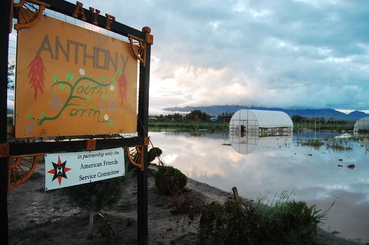 Los agricultores de Nuevo Mexico siguen arando luego de las devastadoras inundaciones de septiembre que llevaron al Presidente Obama a emitir la Declaracion de Desastre para el estado. Imagen de la zona de Anthony inundada. Foto cortesia del Comite de Servicio de Amigos Americanos. (acentos omitidos intencionalmente).