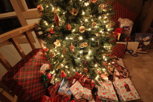 PHOTO: Last-minute shoppers are racing through the stores to find gifts, but experts caution consumers to keep their cool and their finances intact by keeping up their guard. Photo courtesy of freestockphotos.com.