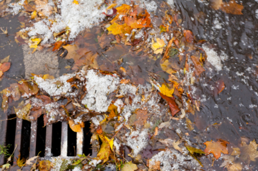PHOTO: Debris and chemical residue end up in storm drains and are carried into local waterways, affecting fish and drinking water. After three years, Clark County has agreed to comply with the federal Clean Water Act to minimize storm-water runoff. Photo credit: iStockphoto.