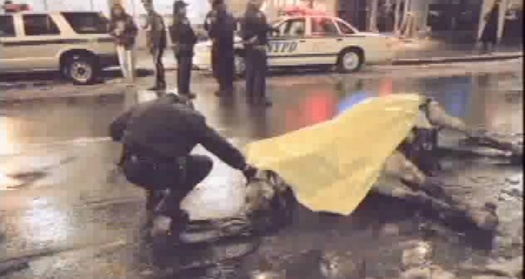 Carriage horse dies on NYC street. Courtesy of The Humane Society of the United States.