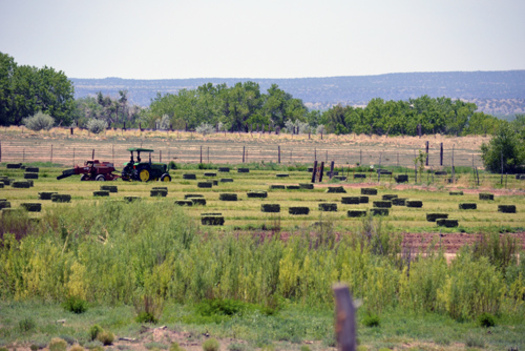 """PHOTO: TBoth the U-S House and Senate are back to work, and the Farm Bill is tops on the """"to-do"""" list. Uncertainty about crop insurance is a concern in New Mexico. Photo courtesy U-S Department of Agriculture."""