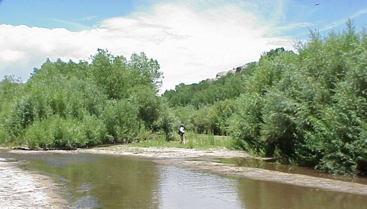 PHOTO: More than 300 businesses in New Mexico are calling on Governor Susana Martinez to not spend hundreds of millions of dollars on Gila River diversion projects. Photo courtesy of the U-S Geological Survey.