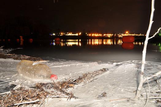 PHOTO: Ashen remnants along the Dan River after the Eden Plant coal ash discharge. Courtesy: Appalachian Voices