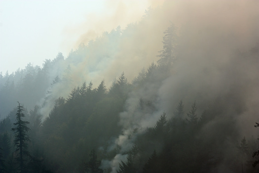 PHOTO: Wildfires connected to climate change are one factor behind the ratings in the new League of Conservation Voters Environmental Scorecard. Montana's delegation earned some of the highest, and lowest, numbers. Credit: Deborah C. Smith