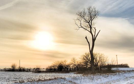 Sunny Prospects for Texas Solar Jobs but Arkansas Lags