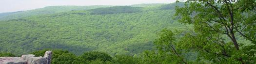 PHOTO: A new National Park Service (NPS) report shows NPS lands, such as Catoctin Mountain Park, are connected to more than $217 million a year in tourism spending in Maryland. CREDIT: NPS
