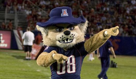 PHOTO: From the Arizona Wildcats to New Mexico's Lobos, mascots are the faces of colleges and universities across the Southwest. A new report from the National Wildlife Federation shows how some of the real-life inspirations for these school spirit-builders may be at risk. Photo courtesy of University of Arizona.