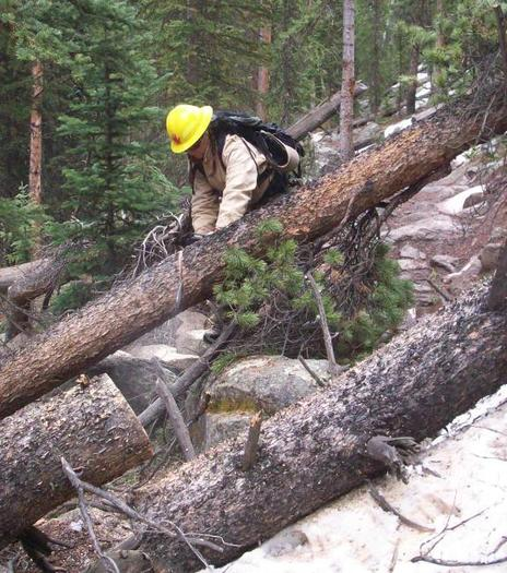PHOTO: Recreation groups have sent a letter to Congress requesting they make it easier to form partnerships to tackle trail cleanup and repairs. Repairs are needed on nearly 75 percent of the trails. Photo courtesy U.S. Forest Service.