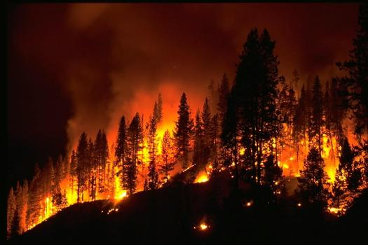 PHOTO: The state of New Mexico hopes a public education campaign this week helps limit the number of wildfires as fire season ramps up. Photo courtesy USDA.