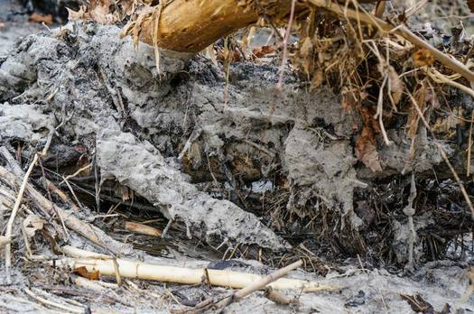 Photo: Coal ash residue is visable along the banks of the Dan River, the site of the February spill in Eden, N.C. Courtesy: Waterkeeper Alliance