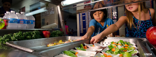PHOTO: Virginia schools in areas of poverty are being offered a new way to serve school lunch and breakfast. They have the option of offering free meals to all students, and families don't have to fill out applications. Photo credit: USDA