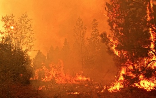 PHOTO: The Rim Fire burns in the Stanislaus National Forest last summer. In light of the state's current wildfires and changing climate, experts say it may be time to re-evaluate how wildfires are fought, and focus on making communities more fire-safe. Photo credit: Mike McMillan, U.S. Forest Service.