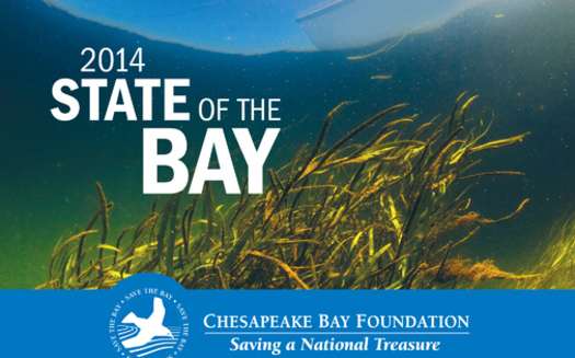 GRAPHIC: Agricultural and conservation activities on Central Pennsylvania creeks, streams and rivers play a significant role in the overall health of Chesapeake Bay, according to the latest biennial report on the state of the bay. Image courtesy of the Chesapeake Bay Foundation.