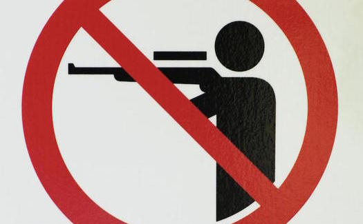 Support for stricter gun laws has grown following the latest mass shooting. (davidpwhelan/morguefile)