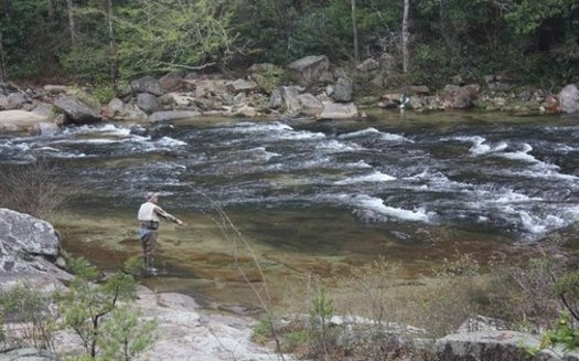 Wilson Creek in Caldwell County has a growing number of outdoor enthusiasts seeking out the area because of improved trout population and waterways. (Trout Unlimited)