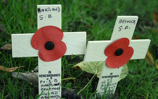 Peace organizations are hoping to restore Armistice Day, also known as Poppy Day and Remembrance Day, which was renamed Veterans day in 1954, as a day for celebrating peace. (Ian Parkes/Flickr)