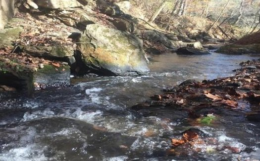 The EPA's proposed rule changes would exempt isolated wetlands, groundwater, mining water, waste treatment ponds and interstate waters from its jurisdiction. (Yadkin Riverkeeper)