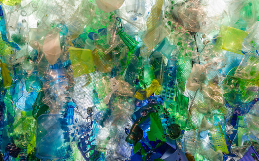 According to some estimates, oceans could contain more plastics than fish by 2050. (Jill Clardy/Adobe Stock)
