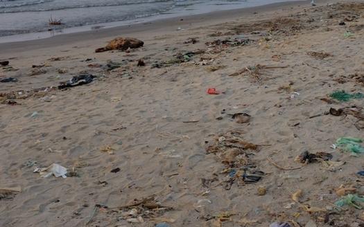 One study estimates that 100 million pieces of plastic, including single-use bags, pollute Lake Erie. (Indi Samarajiva/Flickr)