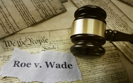 Although recent anti-abortion laws in Iowa have been struck down by the courts, legal observers note that four conservative-leaning justices have been added to the state Supreme Court since 2018. (Adobe Stock)